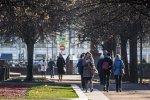 Тепло в декабре. Фото: utro.ru