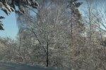 Украину засыплет снегом. Фото: скриншот видео