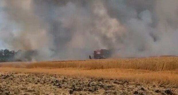 Пожар в поле. Фoто: скриншот YouTube