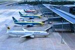 Аэропорт. Фото: 112