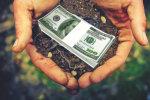 Главное за 14 ноября: как будут продавать землю, бомбардировка Одессы, бюджет 2020, ураганный ветер, скачок цены на газ