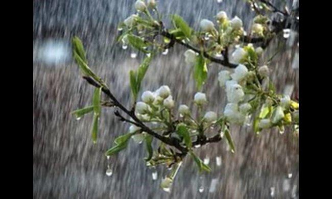 Погода в Украине на четверг 4 апреля и Благовещенье. Жара и дожди — известны даты