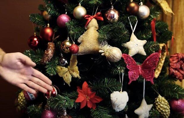 Рождество. Фото: YouTube, скрин