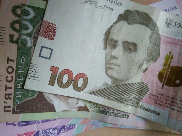 Украинская валюта. Фото: СТЕНА