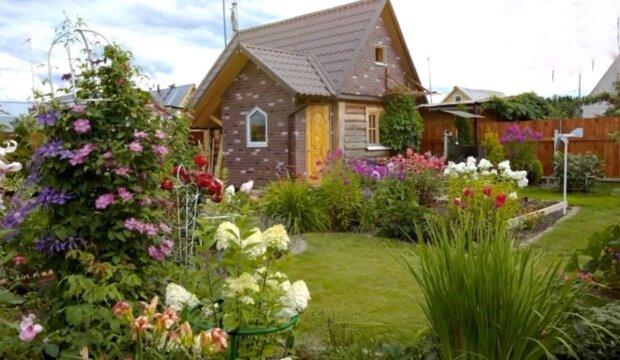 Стало известно, сколько стоит арендовать загородный дом на лето