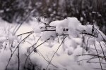 Погода в Украине. Фото: YouTube, скрин