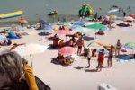 Популярный украинский курорт кишит жалящими монстрами: в воду ни ногой