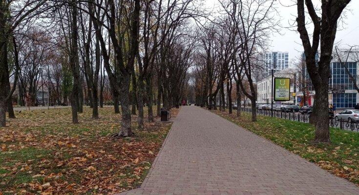 Осень. Фото: Youtube