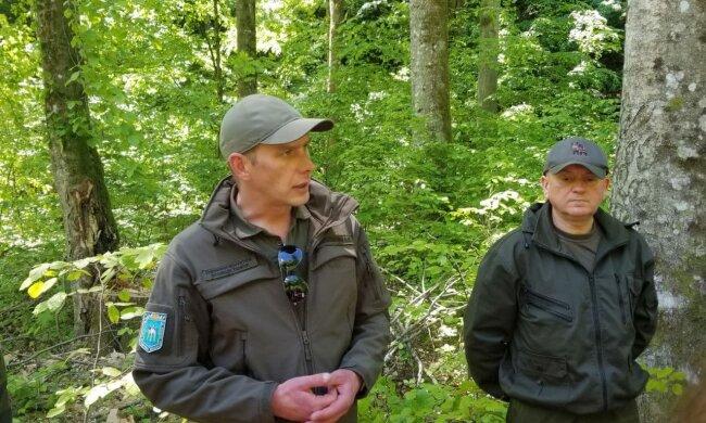 Близько 16 мільйонів гривень за вирубку майже 3 тисяч дерев: в Держекоінспекції розповіли про масштабне порушення