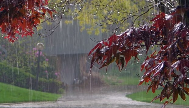 Дождь. Фото: скриншот Youtube