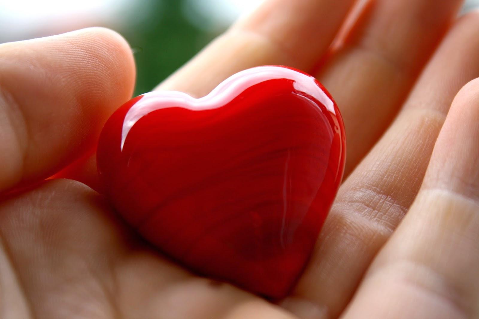 Красивые фотографии о любви сердце в ладонях