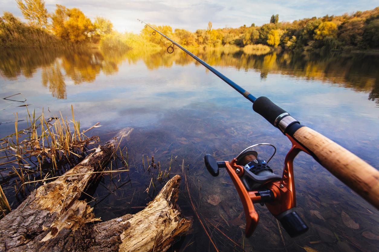 Картинки рыбалки красивые, провизору